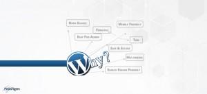 Why You Should Choose WordPress?