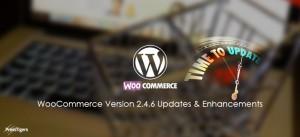 WooCommerce Version 2.4.6 Updates & Enhancements