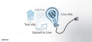 Test Environment for WordPress websites using Sandbox