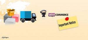 How to Display Custom WooCommerce Notice