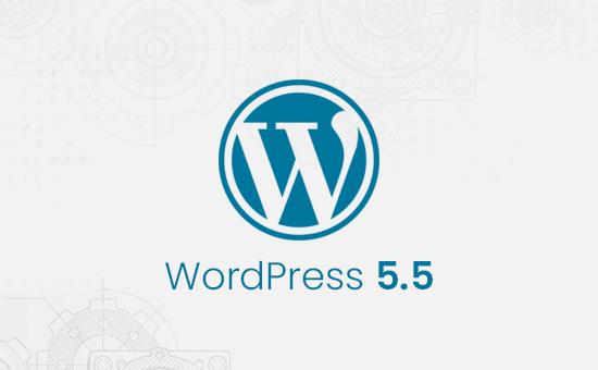 wordpress 5.5.