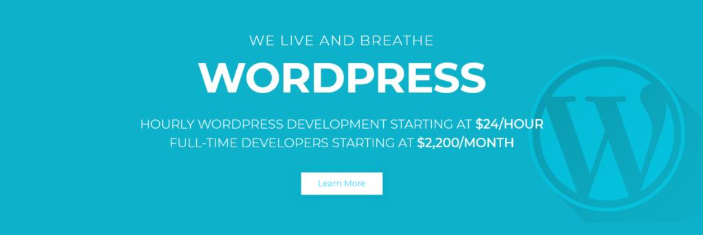 Invest in WordPress plugins